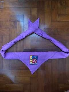 Assorted Scouts Scarfs