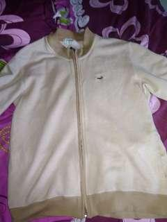 Jacket crocodile tracktop original