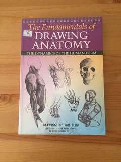 The Fundamentals of Drawing Anatomy