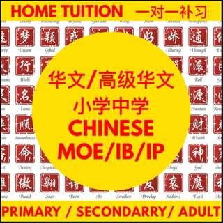 Chinese Tuition | Higher Chinese Tutor | Home Private Chinese Tuition Teacher | Primary Secondary PSLE N O A Level | Chinese Literature | P1 P2 P3 P4 P5 P6 | For Student | Chinese Class | Chinese Tutor | Looking for Tutor | Adult Daily Conversation