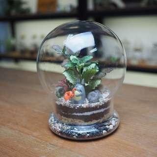 Tinkerbulb Terrarium - Tinker 2