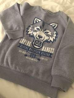 Sweater/sweatshirt boy light blue 6y