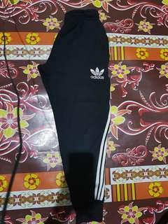 Jogger pants Adidas (premium)