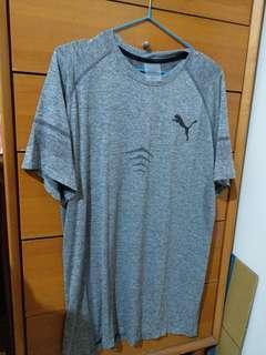 全新日本帶回 Puma T shirt L號