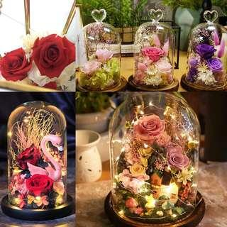 Roses-Preserved Roses Glass Dome