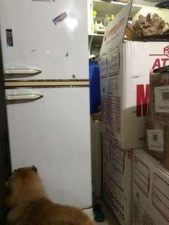 Kelvinator 2 door negosyo ref