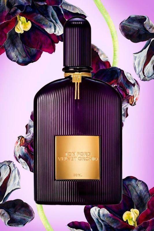 9a2d320827f08 TOM FORD Velvet Orchid Lumière Eau De Parfum 100ML, Health & Beauty ...