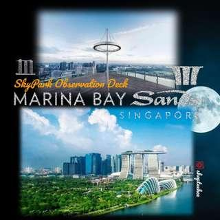 Marina Bay Sands SkyPark Observation Deck
