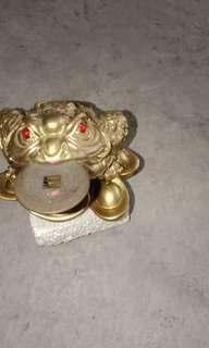 Feng Shui frog biting coin