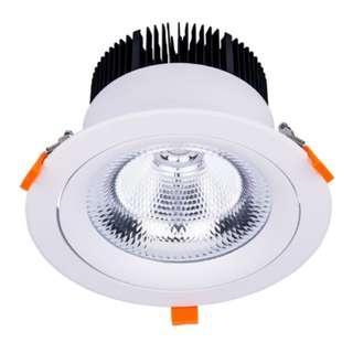 台灣製 ⭐高亮度⭐ LED 9吋崁燈 開孔24公分 80W 聚光行角度24 適用於6米以上高度使用 明偉電源 日亞晶片