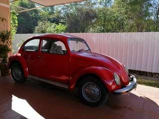 Classic Volkswagen Beetle 1.3 (M)