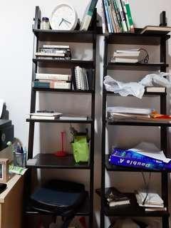 Wood Ladder bookshelf