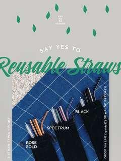 Reusable Straws (3 straws + pouch)