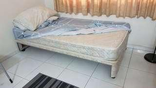 🚚 Single bed with pull out single bed