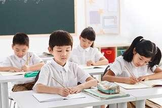 Tuition For All levels & Subjects