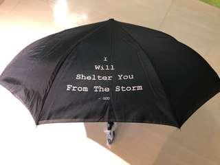 Gift Umbrella - I will shelter you from the storm