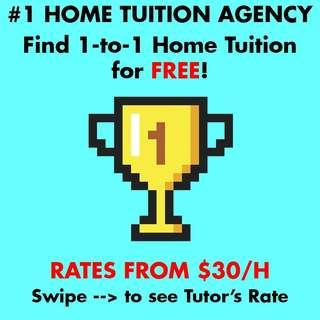 Home Tuition Pri Sec JC K2 P1 P2 P3 P4 P5 P6 Sec 1 2 3 4 5 JC1 JC2 English Chinese Math Science Malay Tamil GP Private One to One Cheap Affordable