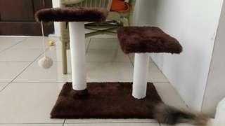 Cat Condo/Garukan Kucing