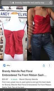 🚚 Brandy Melville Embroidered Sasha top in red