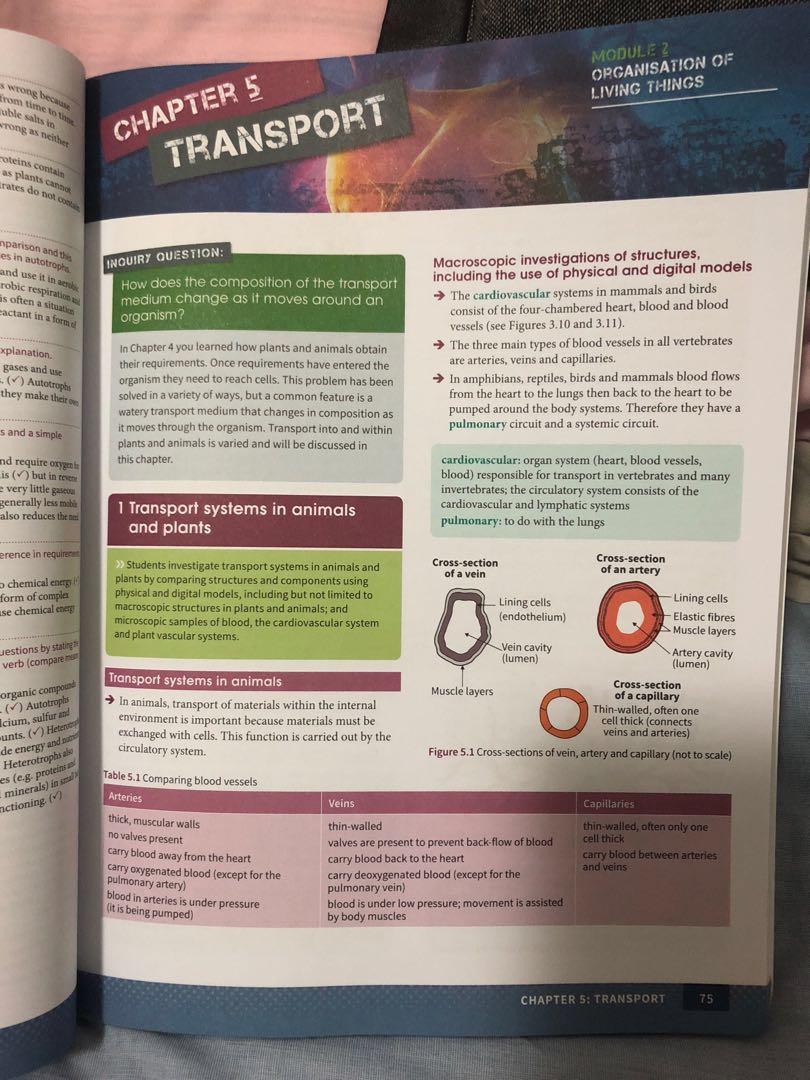 Year 11 Biology Excel book (new syllabus!!)
