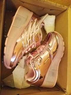 步走鞋 wheel shoes