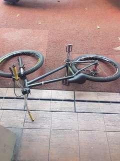 Wtt dirt jump bike