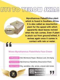 🚚 M.Flabellifolia face cream