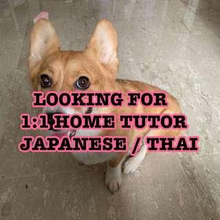 Looking for Japanese/Thai home tutor