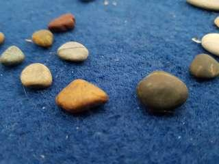 Coral & Beach Stones