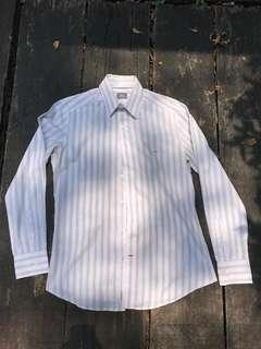 Lacoste Men's Shirt (Size 40)