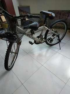 Bicycle, 2 seats