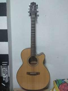 Takamine Acoustic Guitar (D-Series)