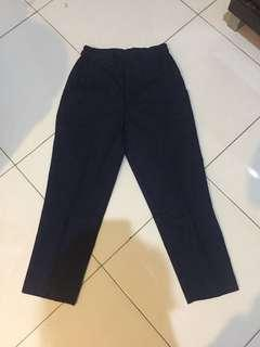 Ankle Pants Navy (iconettecloset)