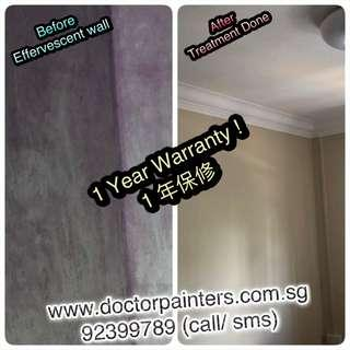 Painting services! Solve all Painting Problem! Momento painting! Bto/resale/occupied painting services