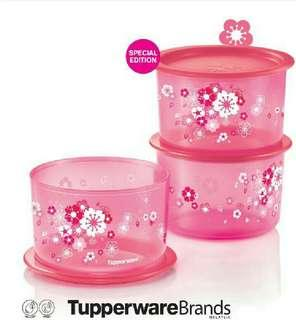 Tupperware Sakura Topper One Touch Medium (3pc) 1.4L