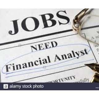 Finance Advisor/Analyst