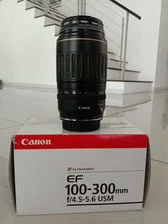 Canon Zoom Lens EF100-300mm
