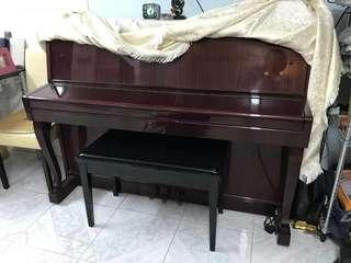 鋼琴一座 適合初學者