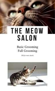 The Meow Salon