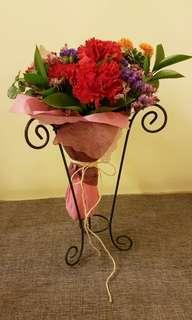 Warm carnations