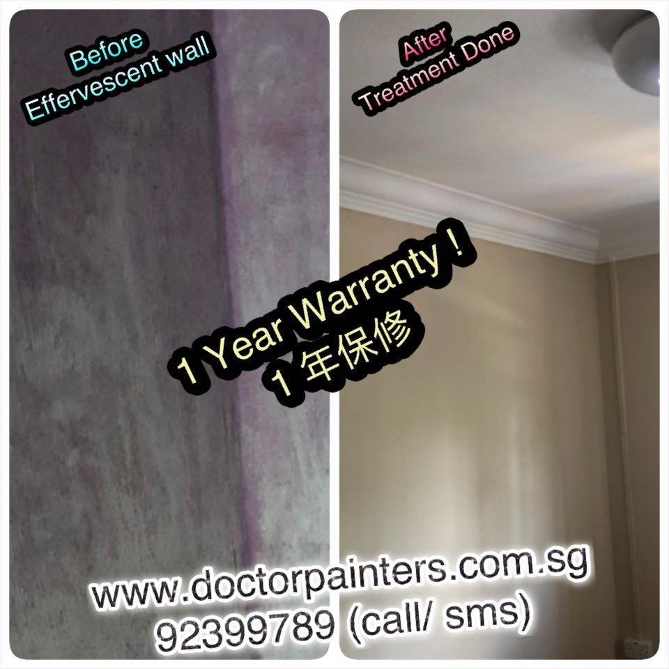 BTO/Resale Painting Services! Raya special!