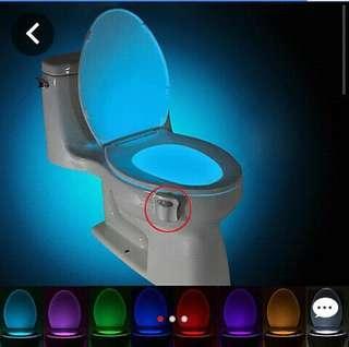 🚽 toilet bowl lights