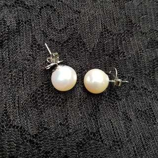 RUSH! South Sea Pearl Earrings