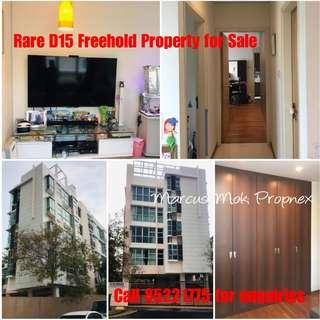 Rare D15 Freehold Apartment for Sale