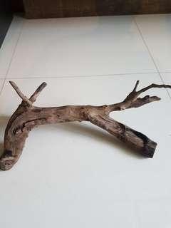 🚚 Aquarium Driftwood