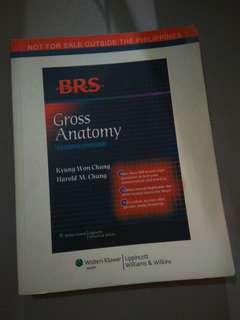 REPRICED❗ BRS Gross Anatomy - 7th Ed (Original Copy)