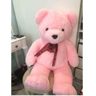 🚚 粉紅泰迪熊🧸玩偶(半個大人高)