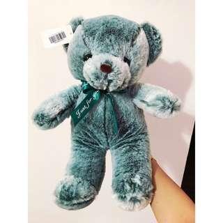 🚚 BNWT - GREEN BEAR