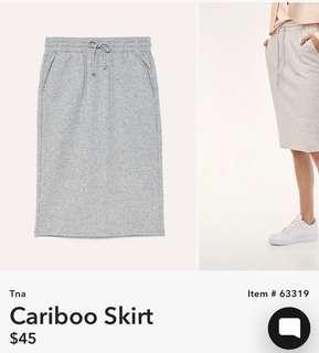 Aritzia cariboo skirt