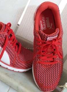 全新puma波鞋